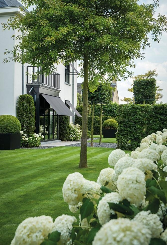 Stylish garden | Tempo da Delicadeza