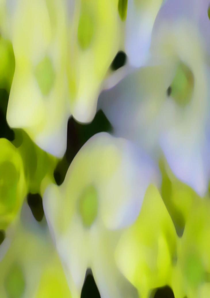Conheça os Jardins de Christian Préaud