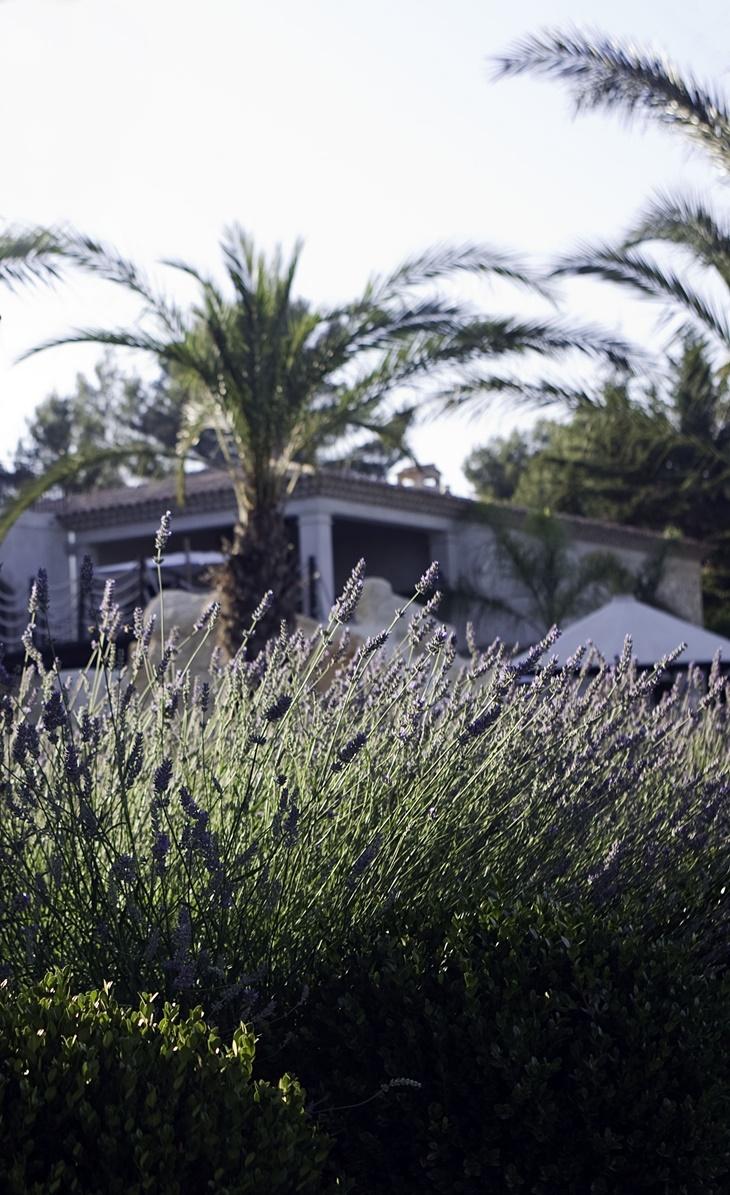 Uma Villa no Sul da França