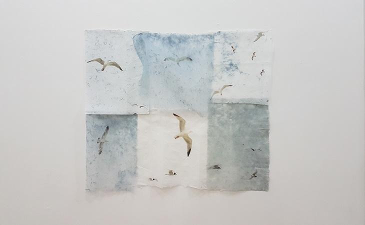 SP-Arte 2018
